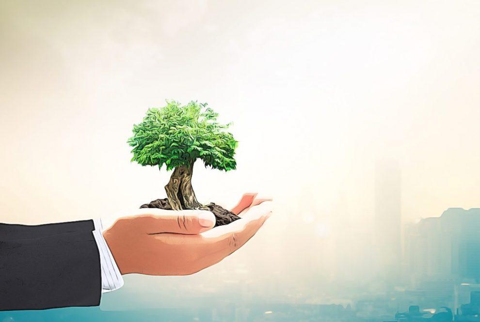 negocios ecologicos y rentables hf (1)